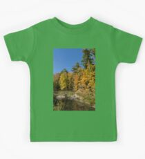 Autumn on the Riverbank - the Changing Forest Kids Clothes