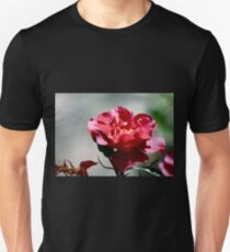 Cinco De Mayo Rose T-Shirt