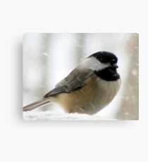 Chickadee In Snowstorm Canvas Print