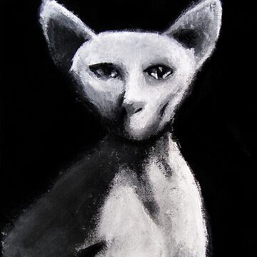 Sphynx Cat by hauscat