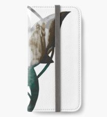 Evenstar at the Argonath iPhone Wallet/Case/Skin