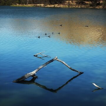 Calm Water at the Lake by GVAZDesigns