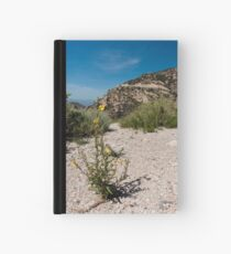Wildflowers Along Sky Island Scenic Byway to Mt. Lemmon Hardcover Journal