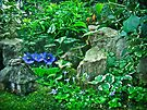 Housewarming Greeting - Fairy Landscape by MotherNature