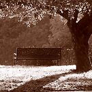 sepia sitting place  by Beth Brightman
