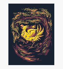 Chocobo with Blossoms Photographic Print