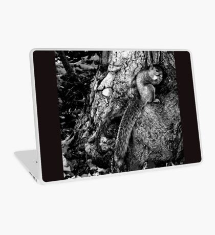 squirrel and the tree king Laptop Skin