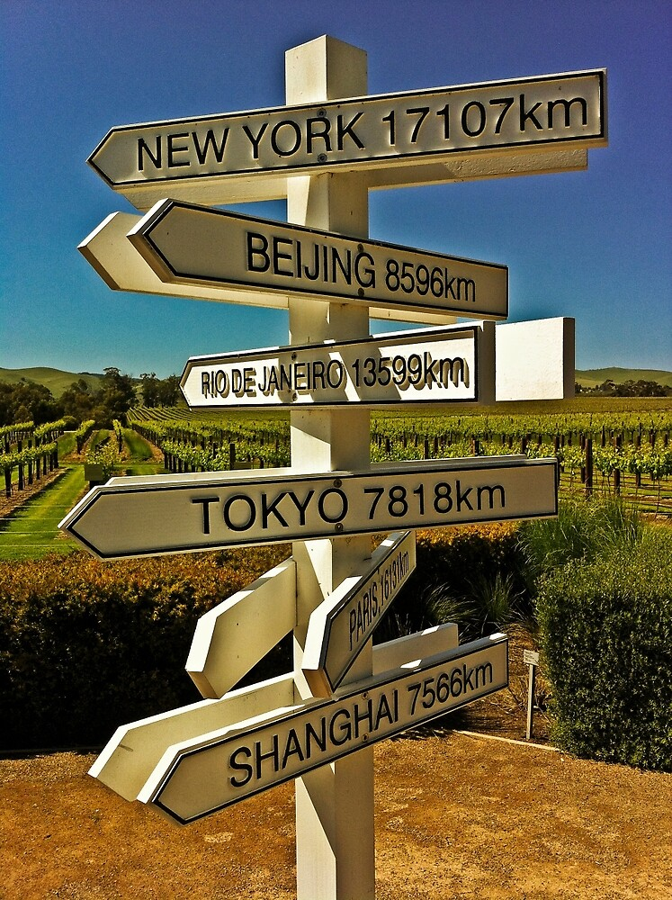 Signs and Vines by TonyCrehan