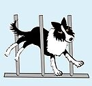 Border Collie 2 by Diana-Lee Saville