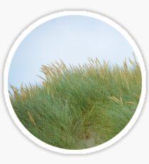 Dune Grass Sticker