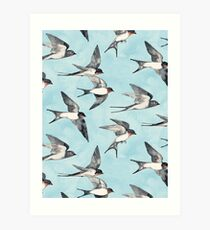 Blue Sky Swallow Flight Art Print