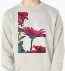 Red Chrysanthemum Flowers Pullover