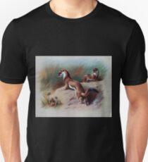 British Mammals Archibald Thorburn 1921 V1 021 Irish  and Summer Coat Stoat Unisex T-Shirt