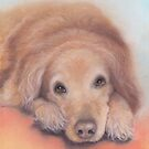 Old Golden by Pam Humbargar