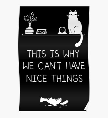 This Is Why We Can't Have Nice Things Poster