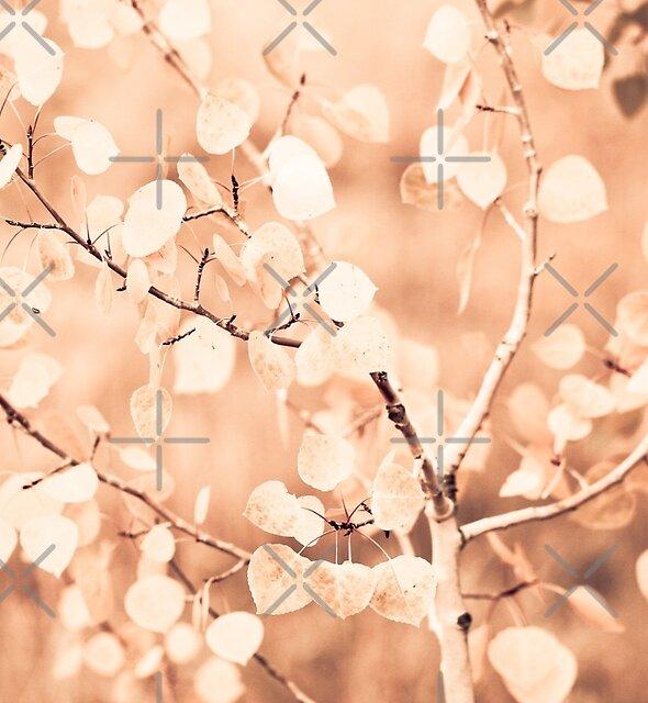 Leaves by Jennifer Durant