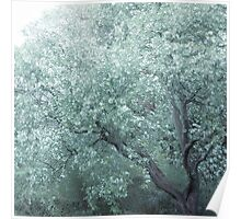 MONET TREE Poster