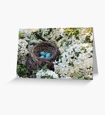 Robin Eggs Greeting Card