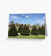 Topiary at Littlecote House Greeting Card