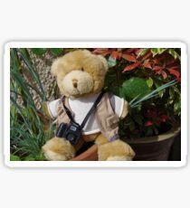 Teddy Photographer Sticker