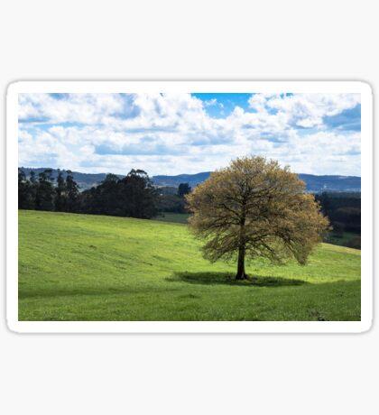 Beautiful Rolling Landscape  Sticker