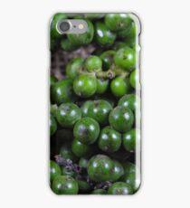 green pepper berries iPhone Case/Skin
