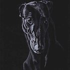 Black Greyhound Silhouette Colored pencil Drawing by Charlotte Yealey