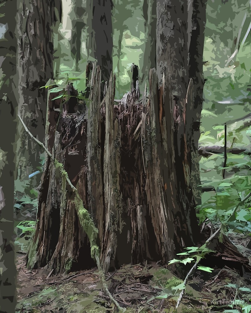 Stump In The Forest by KirtTisdale