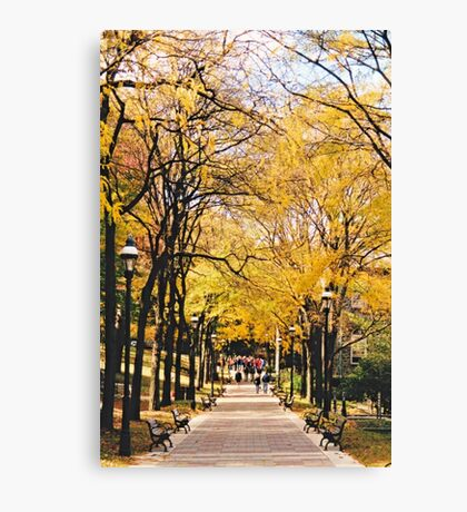 Fall Semester - Lehigh University Canvas Print