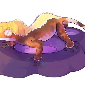 When I try to feed my Crested Gecko by NERDthatDRAWS