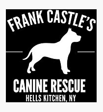 Frank Castle - Dog Rescue Photographic Print
