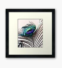 Coloured Feather Framed Print