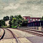 Down the Tracks by Scott Mitchell