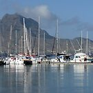 Mindelo Harbor by Lucinda Walter