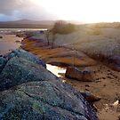 Binalong sunset by jayview