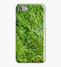 Green grass pattern with soap bubble. iPhone Case/Skin