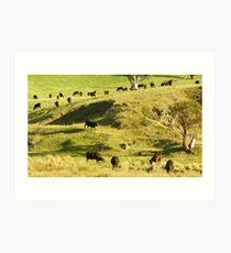 The Cattle on the Hill Art Print