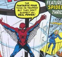 Amazing Spider-Man  Sticker