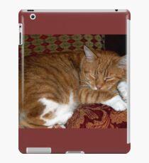 Ginger Tom cat iPad Case/Skin