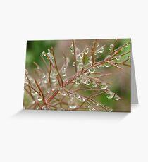 fennel Greeting Card