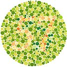 57 - Ishihara Color Test by Gianni A. Sarcone