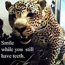 Smile While You Still Have Teeth by PamelaViktoria