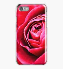 Rose macro  iPhone Case/Skin