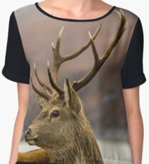 Autumnal Stag Women's Chiffon Top