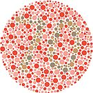 70 - Ishihara Color Test by Gianni A. Sarcone