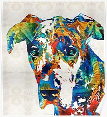 Colorful Great Dane Art Dog By Sharon Cummings Poster