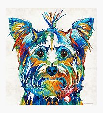 Colorful Yorkie Dog Art - Yorkshire Terrier - By Sharon Cummings Photographic Print