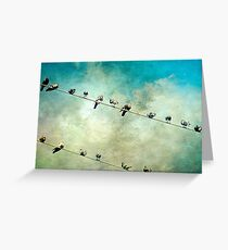 Birds on a High Wire Greeting Card