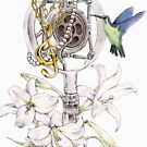 Hummingbird by TurkeysDesign