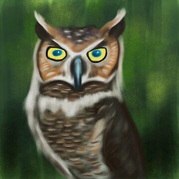 Owl by jkinmont